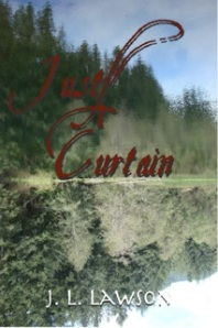 Curtain cover